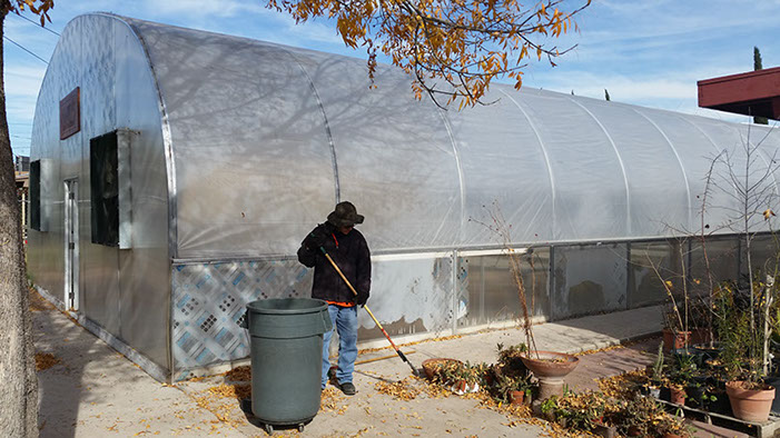 Working outside the greenhouse