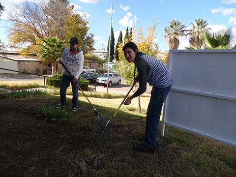 Groundskeeping training with raking